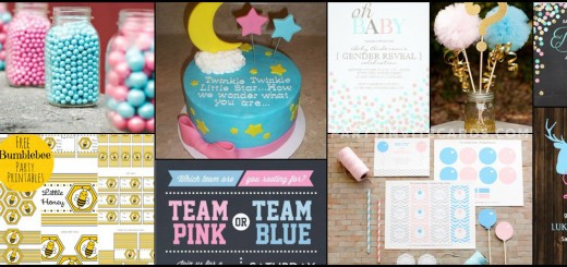 baby-gender-reveal-party-invites-pic1wm