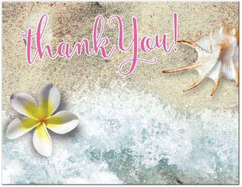 by-the-beach-thank-you-postcard-frangipani-seashell